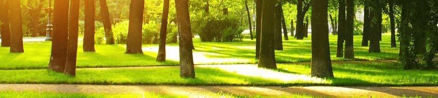 Про Home & Park | HOME&PARK